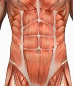 CORE træning: træning af kropskernen