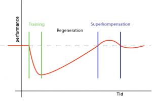 restitution efter styrketræning
